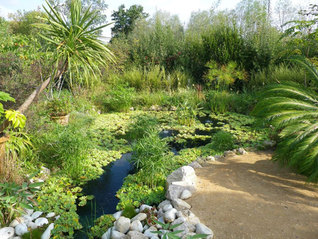 1ère sortie aux Botaniques de Chaumont sur Loire sept. 20