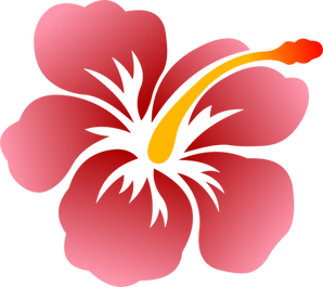 hibiscus flower.png