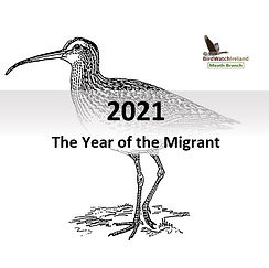 Year of the Migrant 2021.jpg
