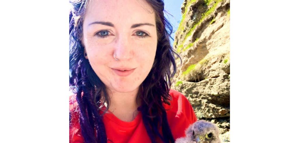Kestrels in Ireland