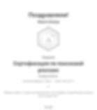 Сертификат Гугл.png