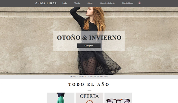 Moda y ropa website templates – Moda femenina