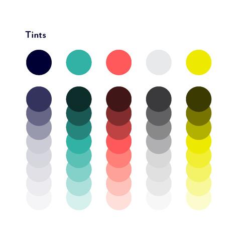 S&T-S_Palette.jpg