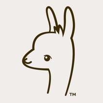Little-Llama.png