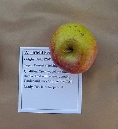 Westfield Seek No Further