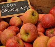 Kidd's Orange Red