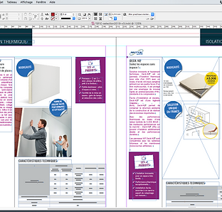 Indesign Exe.png