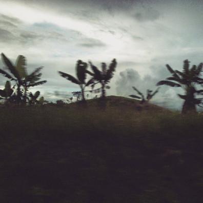40.Cielo-_Lacanjá-_-Palenque-II.jpg