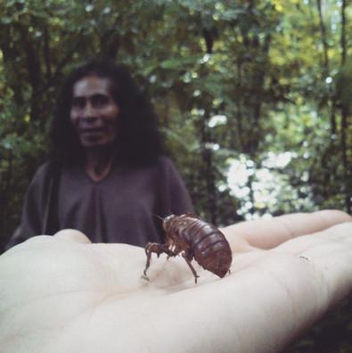 41.Maya--51-ans,-lacadonien.jpg