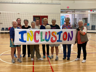 Volleyball Inclusion.jpg