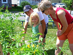 Kid's organic garden, mary nash beaupre sustainable gardens, campbell's true value kids garden, vegetables, kids gardening program
