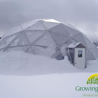 Dome in Winter