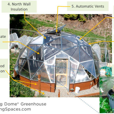Dome Features