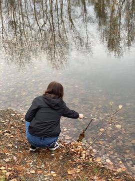 Walk Waterville Water.jpg