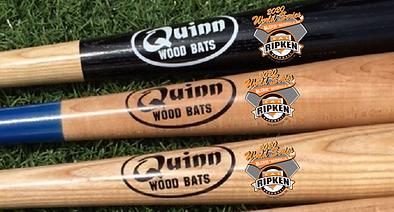 Quinn WS Bats.png