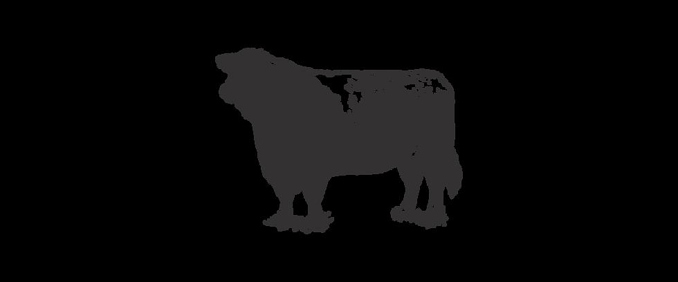 butchers_web_cow3.png