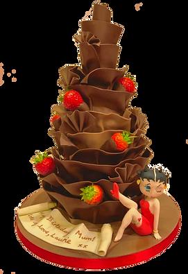 Chocolate wrap cake