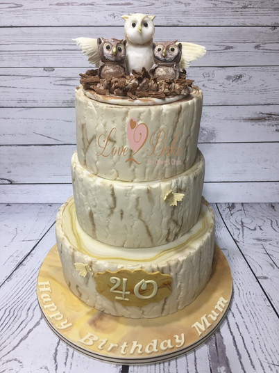 Owl Cake by Love2bake