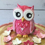 Pink Owl topper