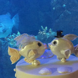 Fish cake toppers