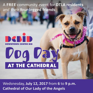 Information for Dog Day Afternoon