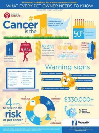 November is National Pet Cancer Awareness Month