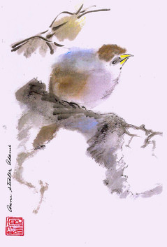 Bird on a Branch_1