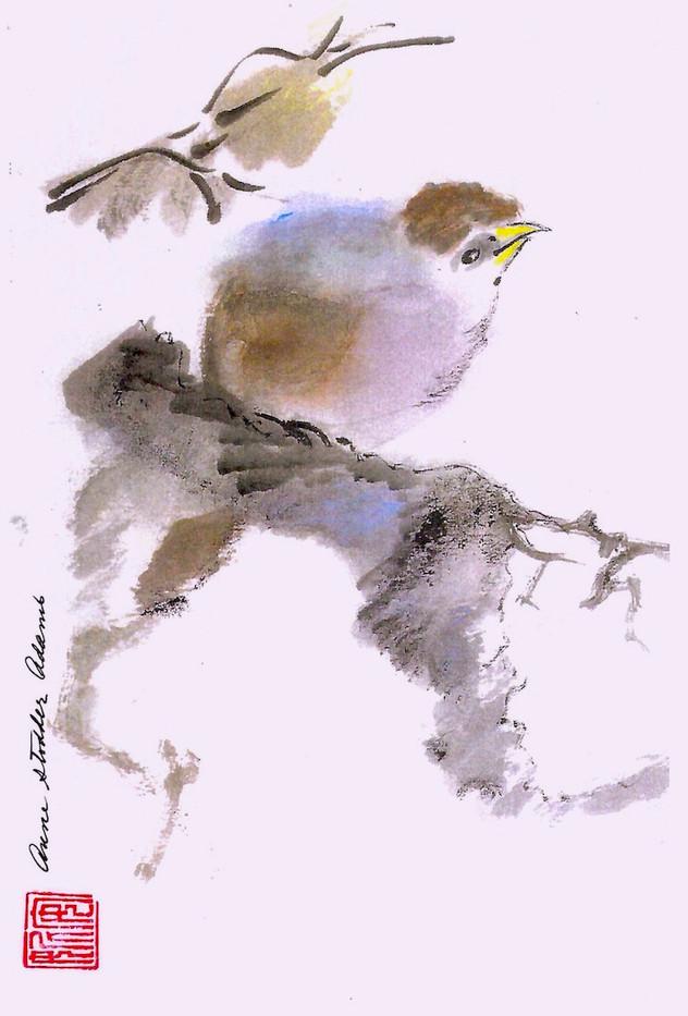 Bird on a Branch_1