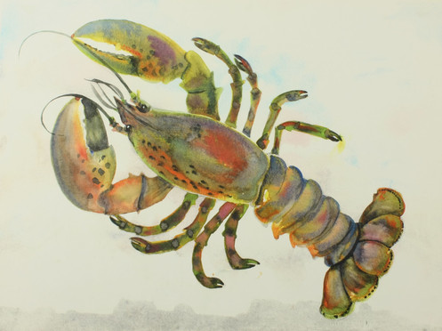 The Lobster_1