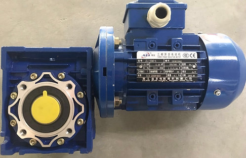 Motor with Gearbox- RV050120+JL1 63M2-4