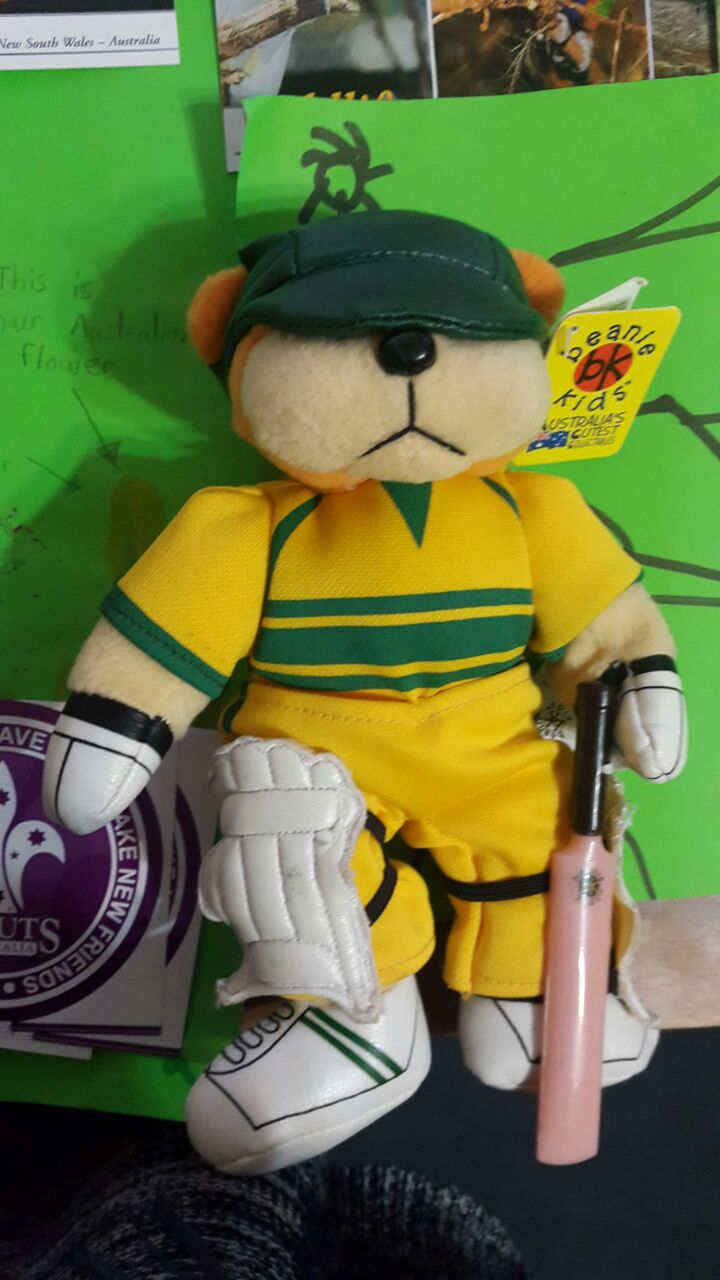 A teddy bear dressed in Australian cricket gear which we received as a gift