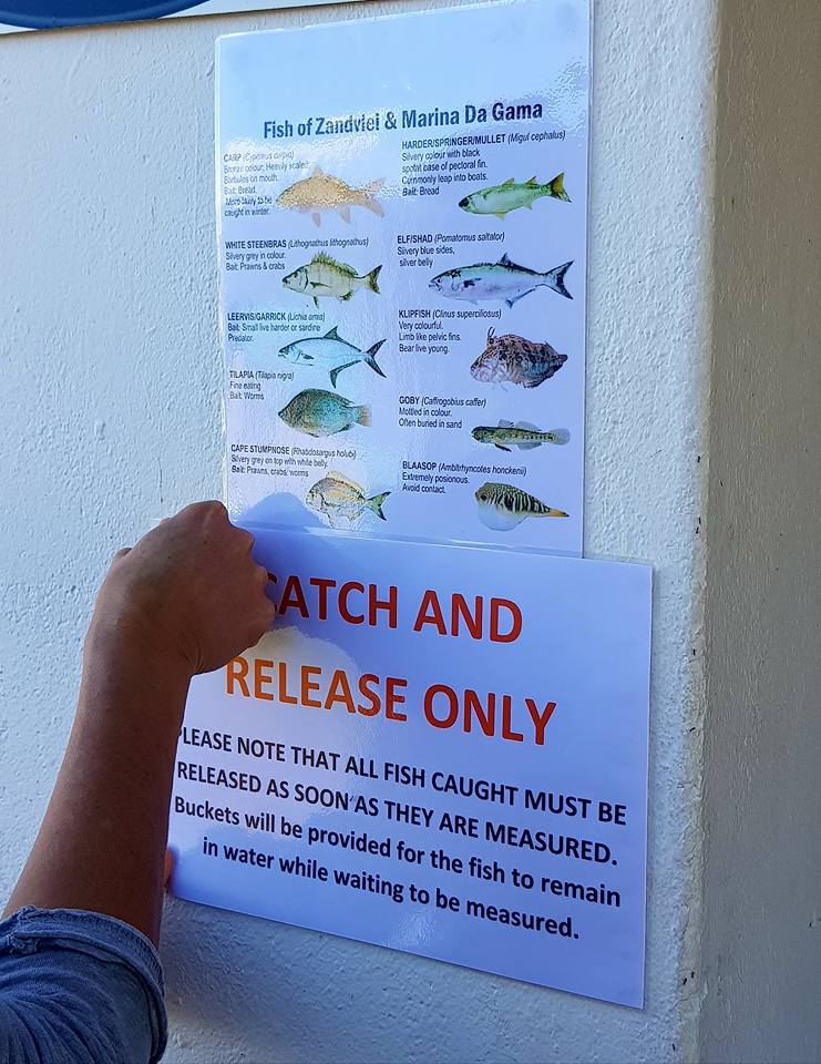 Strictly Catch and Release