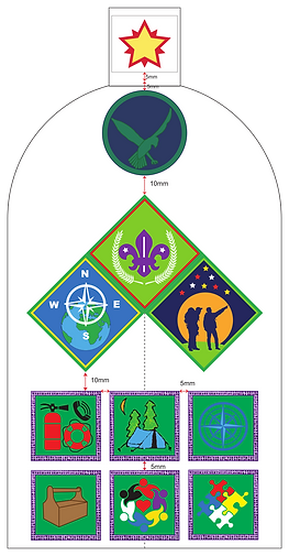 Scout_Left_Sleeve_Badge_Chart_2019.png