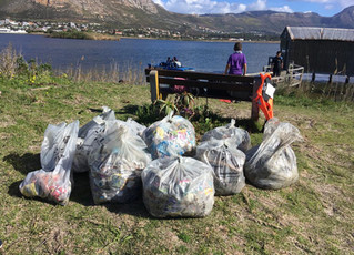 Discoverer Service Project - Zandvlei Clean-Up