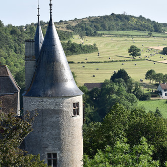 Le contenu du château de La Rochepot aux enchères