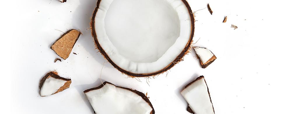 Fiesta Tropicale Fresh Organic Coconut