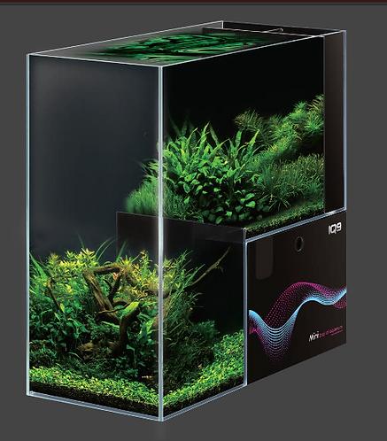 Dymax IQ9 Drop Off Glass Aquarium – Freshwater | Fishy Biz | Adelaide Tropical Fish Business | Clown Fish | South Australia