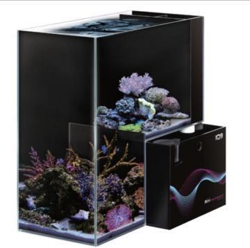 Dymax IQ9 - Marine Aquarium | Fishy Biz | Adelaide Tropical Fish Tanks | Clown Fish | South Australia | Free Delivery