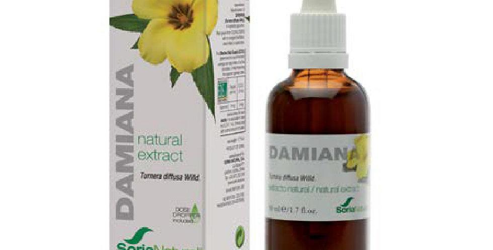 達米阿那萃取液 Damiana Extract