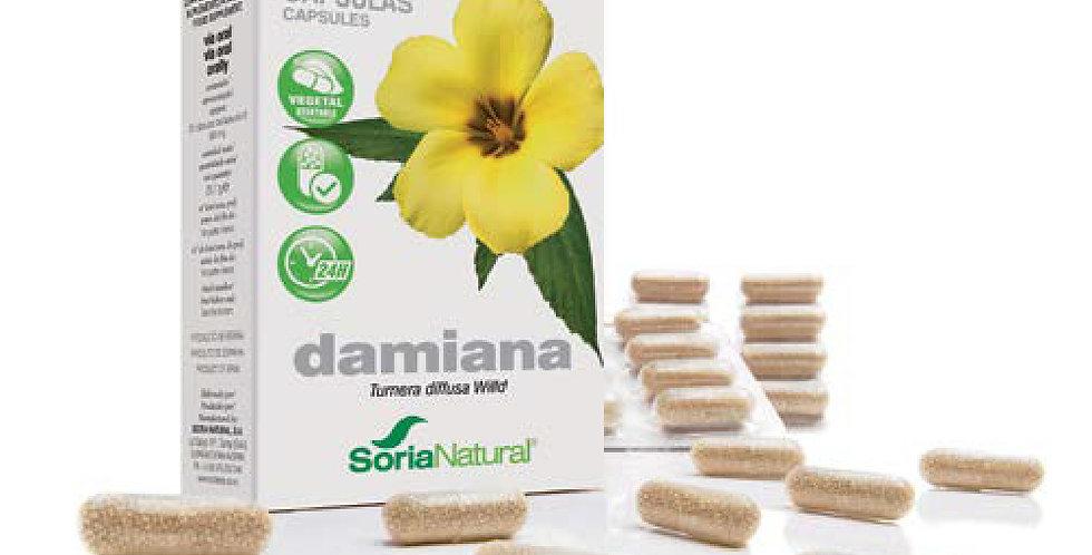 。達米阿那精華 Capsules 13-S Damiana XXI