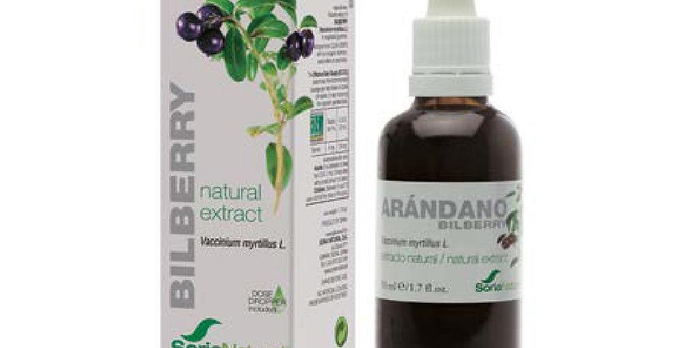 山桑子萃取液 Bilberry Extract