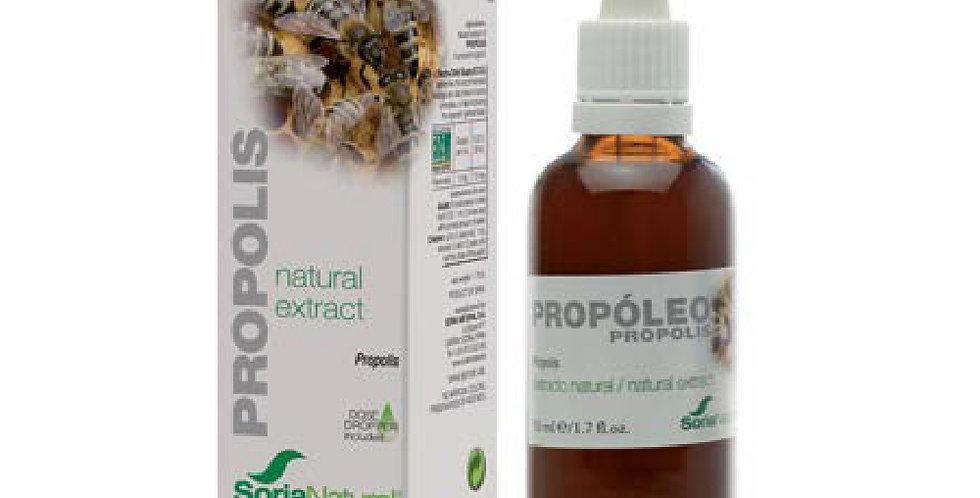 蜂膠萃取液 Propolis Extract