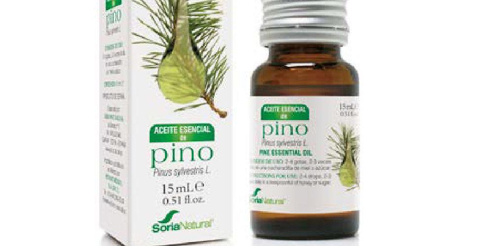松樹精油 Pine Essential Oil