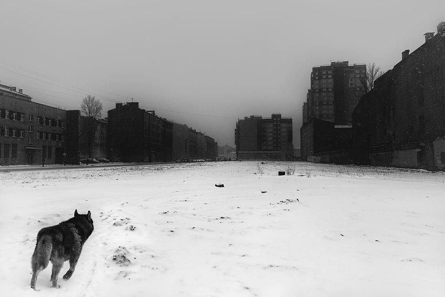 012 Russia, suburbs.jpg