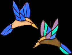 00016-Mythical Hummingbirds