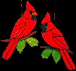 00005-Cardinals