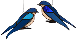 00003-Barn Swallows Perched