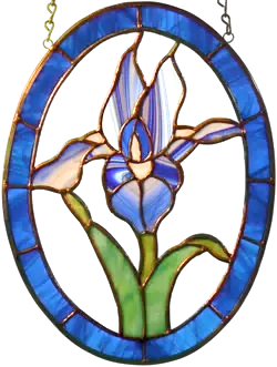 00054-Iris Panel