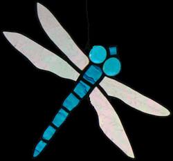 00009-Dragonfly