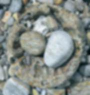 Santa Barbara Pier Memory.jpg